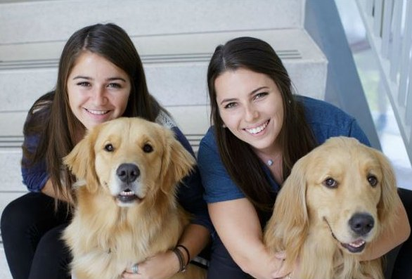 students train service dogs